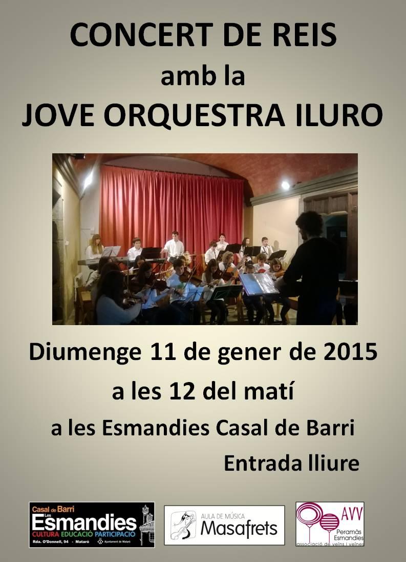 1-2015 concert de reis 1-2015 (2)